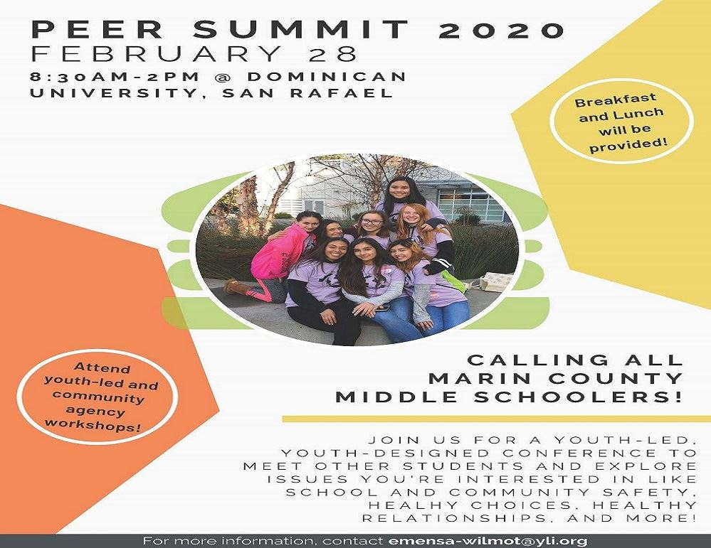IMage of the Peer Summit 2020 Workshop flyer